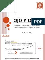 4.- OJO Y OIDO.pptx