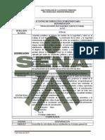 Proyecto de Curso Sena Standares Minimos de SST