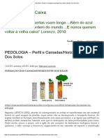 PEDOLOGIA – Perfil e Camadas_Horizontes Dos Solos _ Ideias Fora Da Caixa