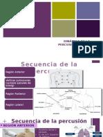 DINÁMICA DE LA PERCUSIÓN PULMONAR. Y HALLAZGOS pptx
