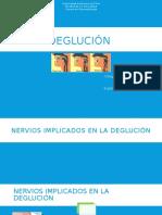 229778926-deglucion