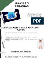 praxias-150515223252-lva1-app6891