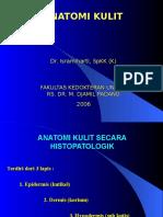 Anatomi Kulit - Slide