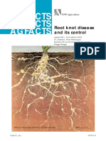 Root Knot Disease