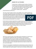 Beneficios Y Propiedades De Los Cereales