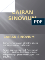 060114 - Cairan Sinovium - Dr. Saud