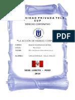 Derecho Constiru - Habeas Corpus