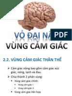 7.V_ n_o CG.pdf