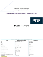 Anatomia Pelvis Femenina Por CT
