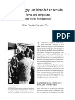 identidades gay en tension.pdf