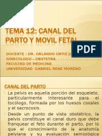 Canal Del Parto y Movil Fetal