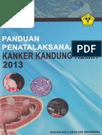 Guidelines IAUI Tumor Buli