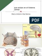 Fármacos Que Actúan en El Sistema Nervioso Central - Copia
