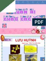 Lưu Huỳnh -CHÂU PHA