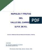 Plan de Negocio Nopalea y Frutas Del Valle Del Carrizo