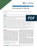 The Transcriptional Landscape of Chlamydia Pneumoniae