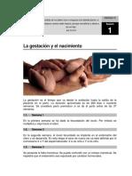 La gestación y el nacimiento