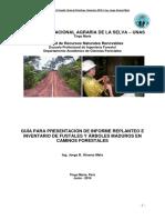 Guía Presentación Informe Caminos forestales