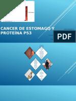 Cancer de Estomago y Proteína p53