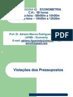 ECONOMETRIA 2015 2 Violacao Pressupostos