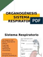 Clase 7 Sistema Respiratorio