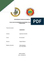 LIMADORA.pdf