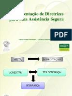 Implementação de Diretrizes Para Uma Assistencia Segura Ediana