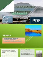 Proyectos Ambientales y Sustentabilidad1 ARGENTINA
