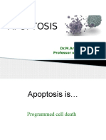 Apoptosis Popad 2014 v2