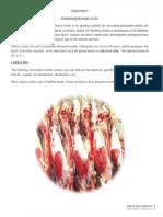 Chap7- Standard Bovine Cut.pdf