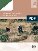 Secuestro de Carbono en Tierras Aridas