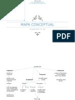 Mapa Conceptual Acuerdo 696
