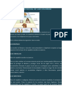 Organizaciòn Social de Las Colonias Españolas