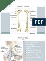 Dislokasi Hip 2