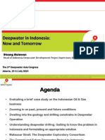 Deepwater Indonesia now and future