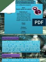 Charla-Evaluación de Proyectos PDF