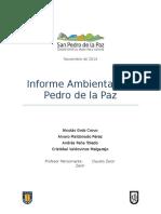 Informe Ambiental San Pedro de La Paz (1)