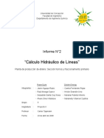 Informe de Cálculo Hidráulico de Líneas
