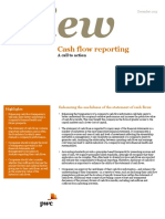 point-of-view-cash-flow-reporting.pdf