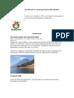 Instituciones Que Velan Por La Conservacion Del Medioa Ambeinte