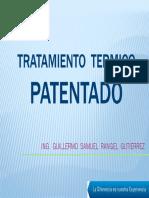 02-Tratamiento Termico Patentado Camesa