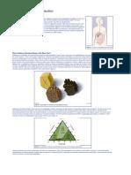 gallstone disease