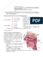 Histologia Humana Aparato Respiratorio