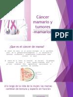 Cáncer mamario y tumores mamarios.odp
