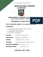 informe-de-lab 11.docx