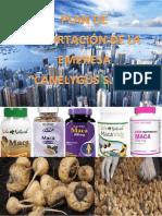 plan de negocio esportacion de capsulas de maca