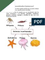 Los  invertebrados.docx