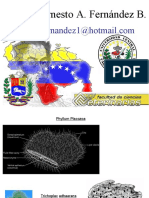 PHYLLUM PLATELMINTOS2010