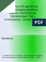 Anomalías Ciclo Celular, Cancer Term Genetica Basica