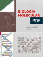 Biología Molecular Curso